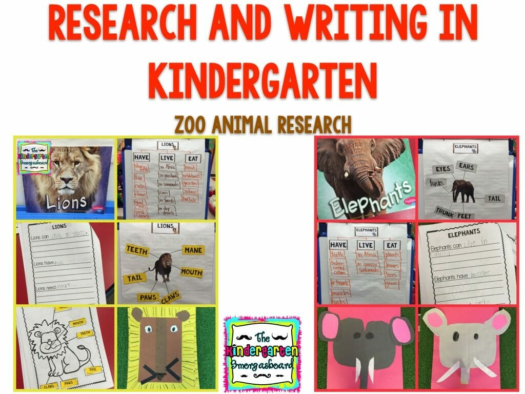 zoo theme kindergarten