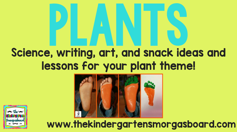 Plants Research Project | The Kindergarten Smorgasboard on plant cell activity, phases of the moon kindergarten, plant life cycle activity, plant ideas and activities resources, simple machines kindergarten, plant classification key, plant activities for preschool, plant activities for toddlers, plant activities daycare, plant activities social studies,